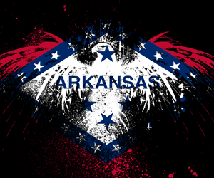 Arkansas Wallpaper 300x250