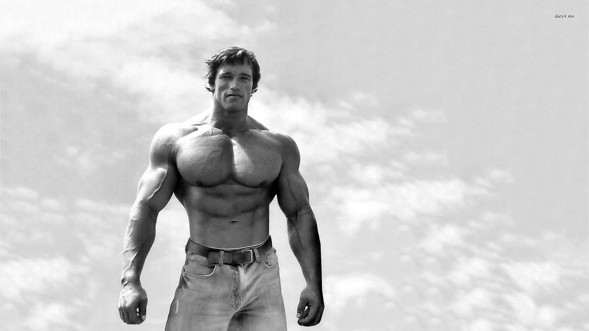 Top Arnold Schwarzenegger HD Wallpapers | Fine Wallpapers