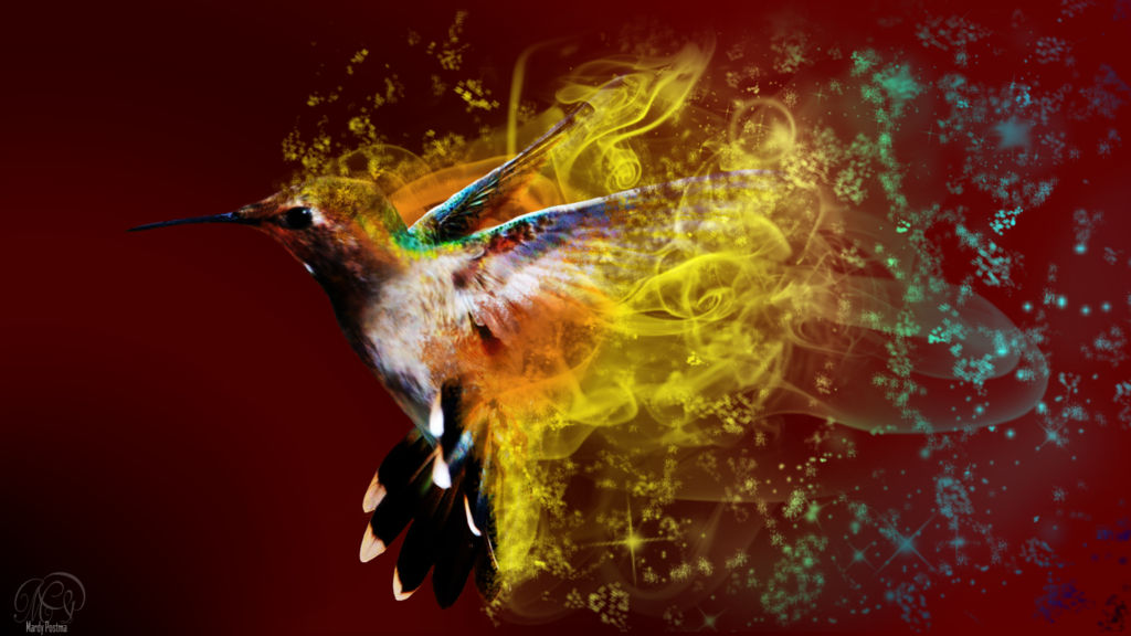 Wide HD Hummingbird Wallpaper | B.SCB WP&BG Collection HD Quality