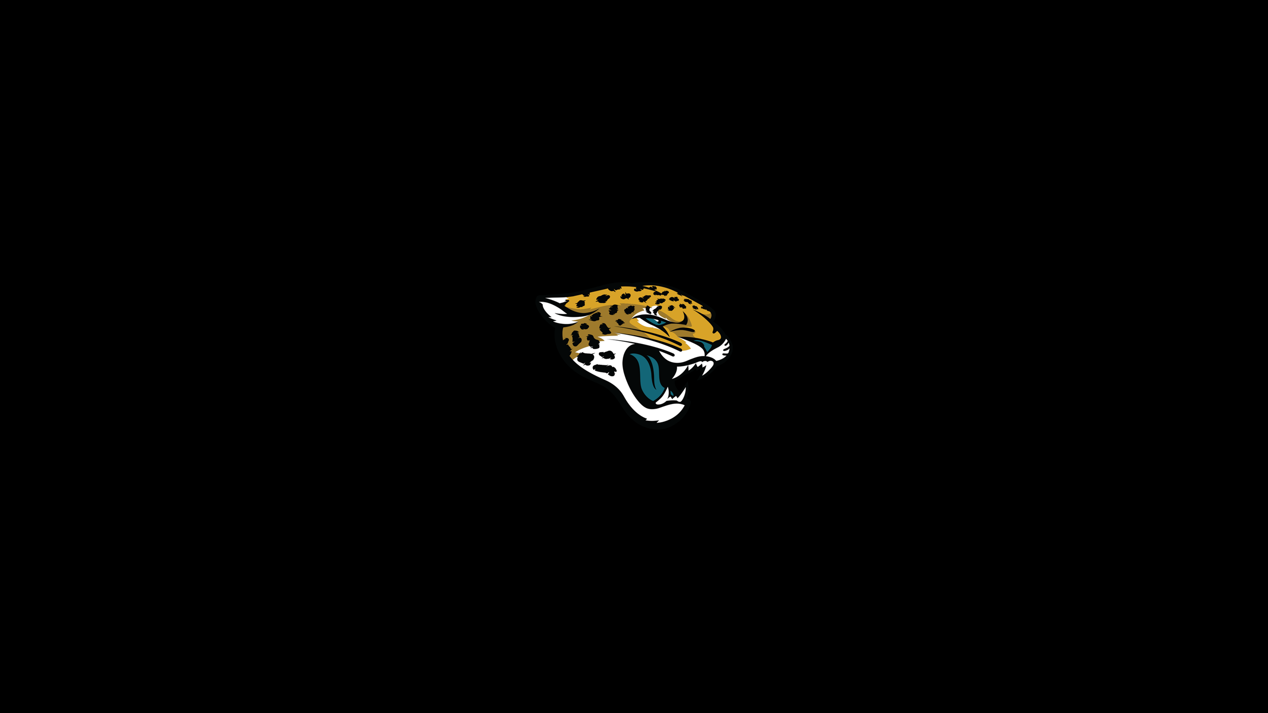 Top Beautiful Jacksonville Jaguars Photos, 2560x1440