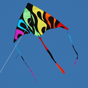 Interesting Kite HDQ Images Collection: 27027050, 300x300