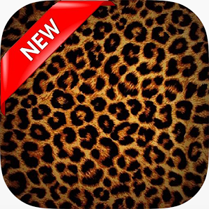 Download V.22 - Leopard Print, B.SCB Wallpapers