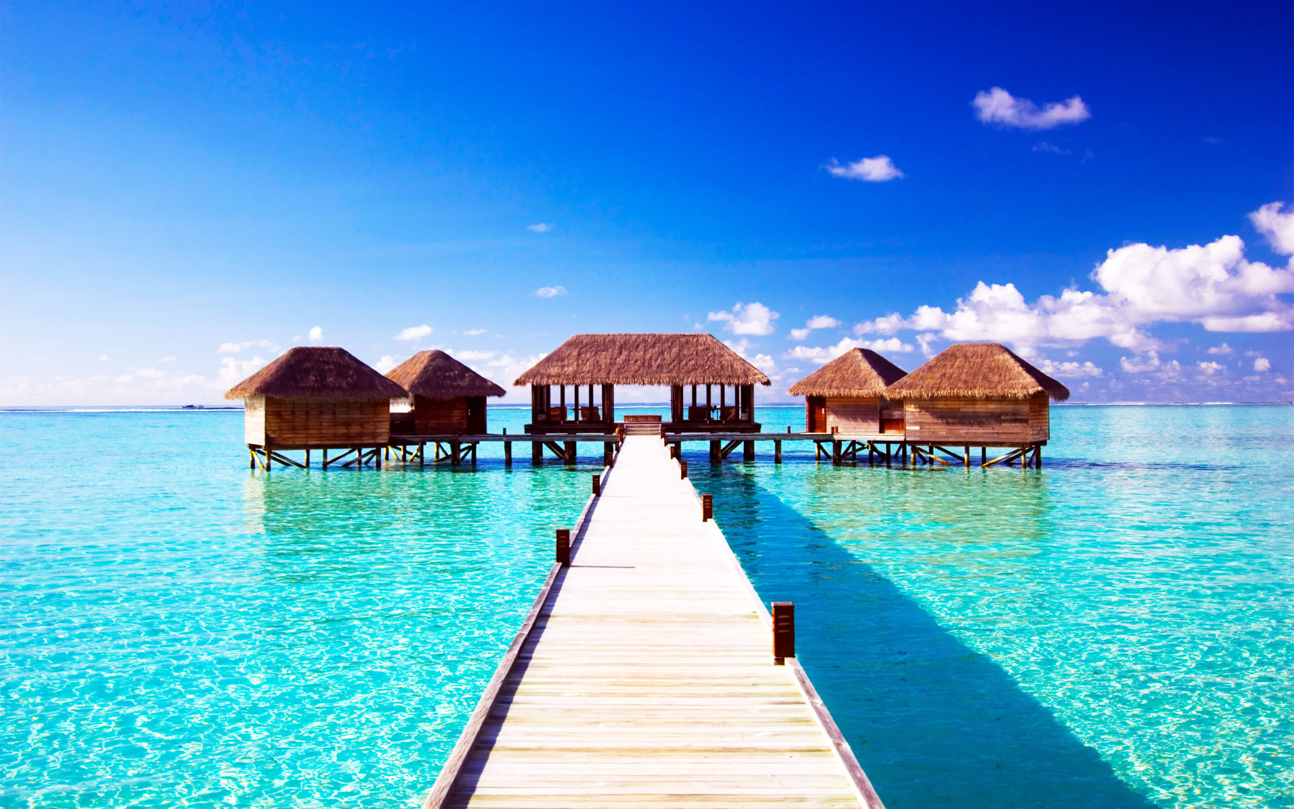 Widescreen Maldive Islands Images | Spring Loveday, 2560x1600