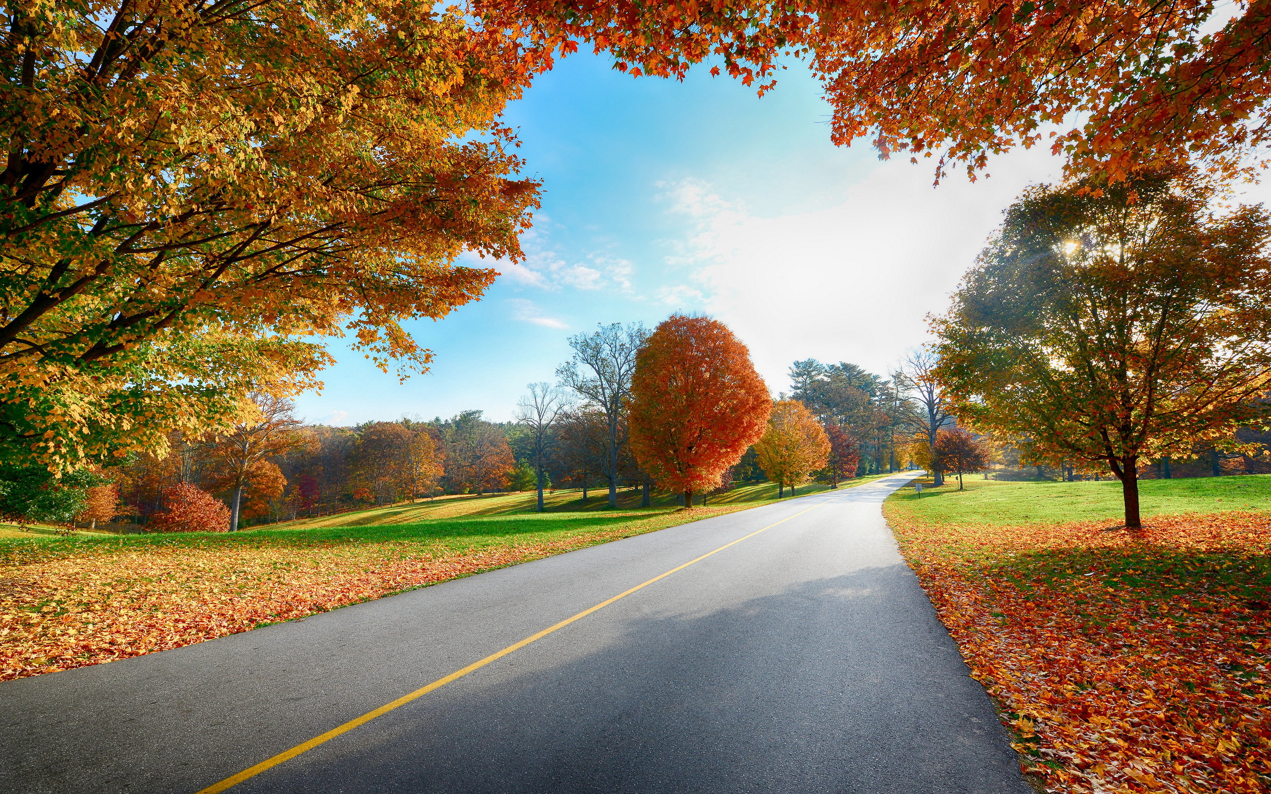 2560x1600 px : Autumn Wallpapers