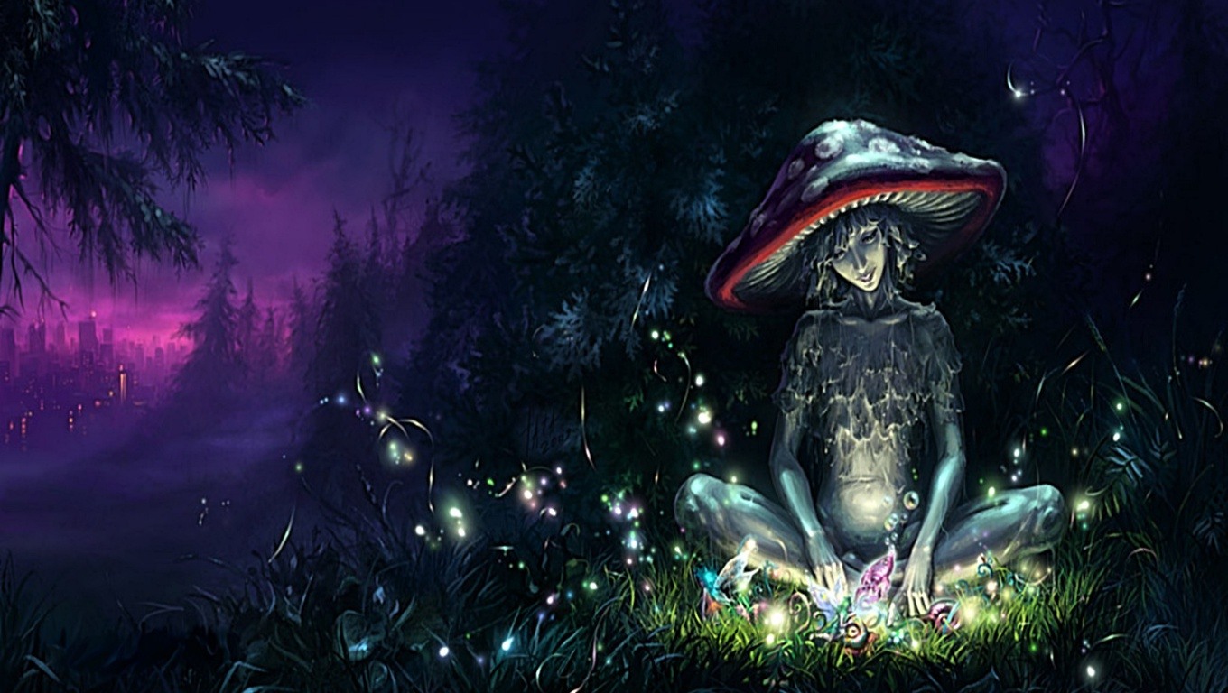 Cool Wallpapers Collection: Mushrooms Desktop Wallpapers