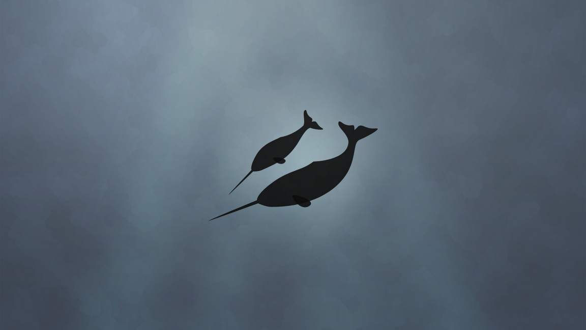 Narwhal | Narwhal Images, Pictures, Wallpapers on B.SCB Wallpapers