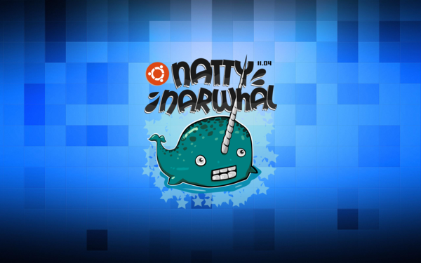 Narwhal High Quality #39461129, Rafael Besaw