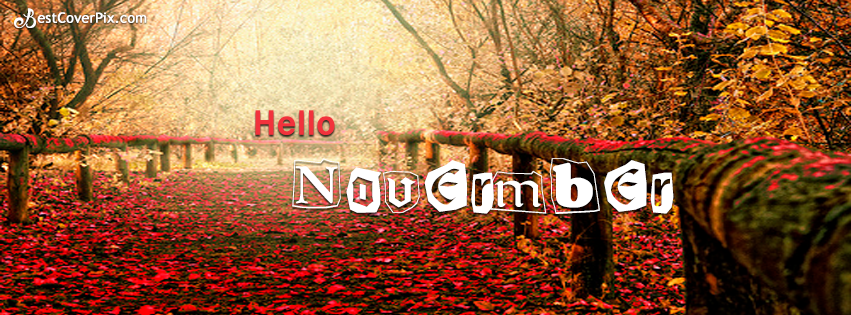November Wallpapers (851x315 px, QAI9696)