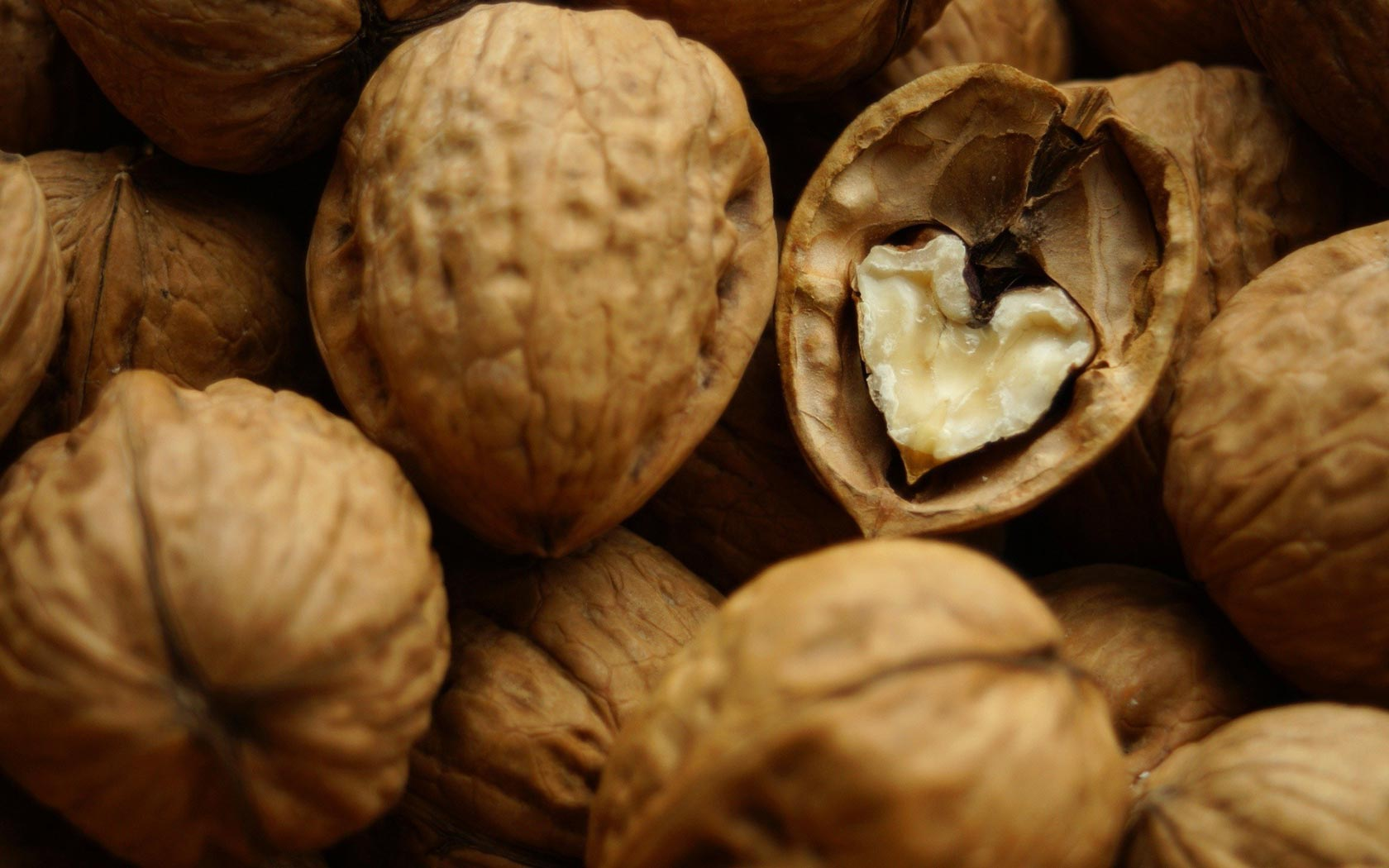PC.8989, Nuts, HD Photo Collection