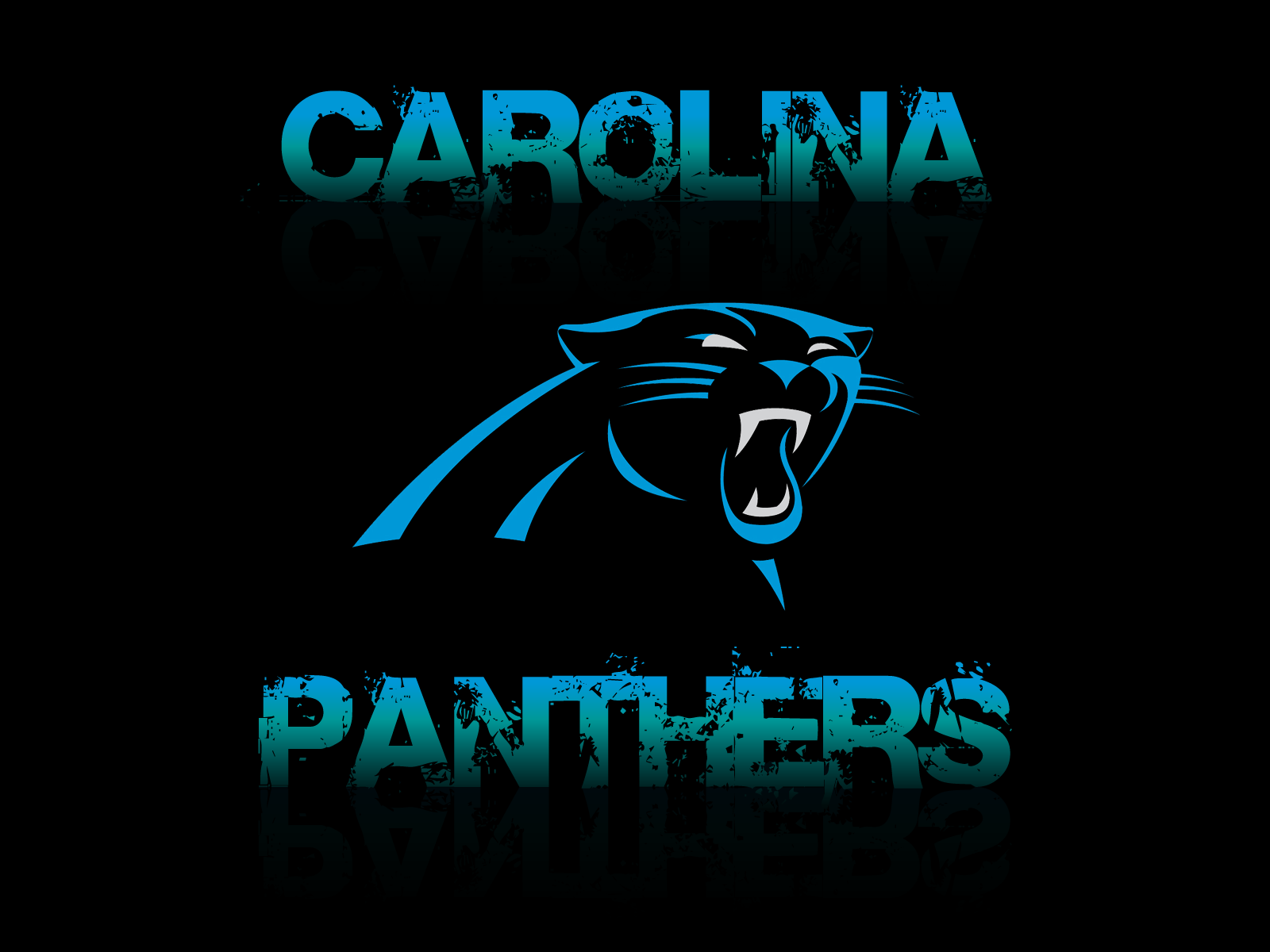 Panthers – High Quality HD Wallpapers