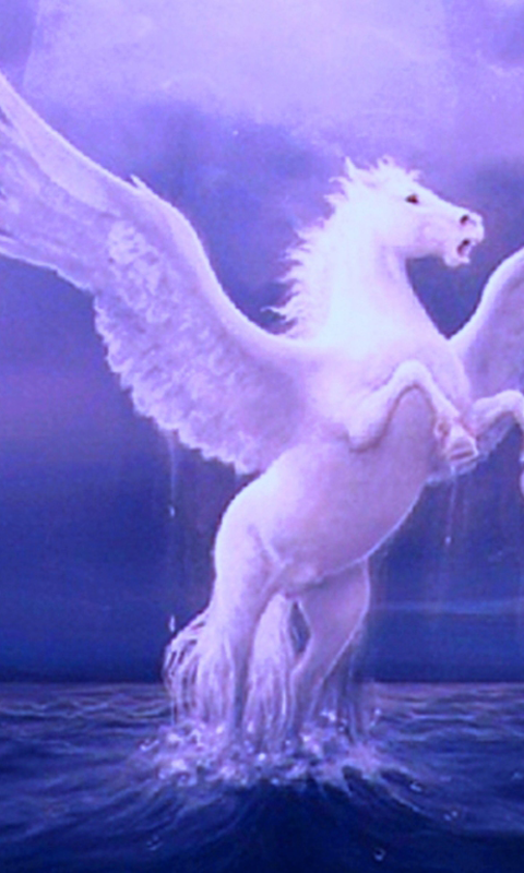 Pegasus Backgrounds (PC, Mobile, Gadgets) Compatible | 480x800