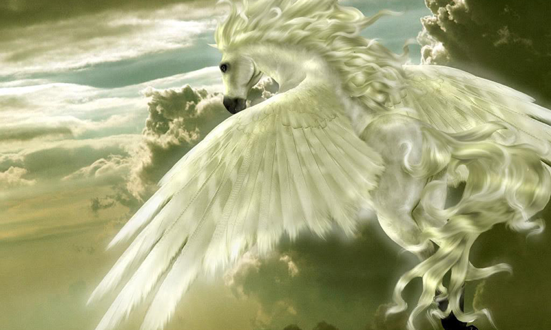 Pegasus | HD Wallpapers, Backgrounds