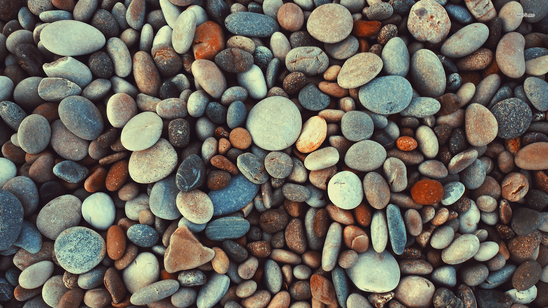 Photo Collection: WBT.53 Pebbles, 02.25.15