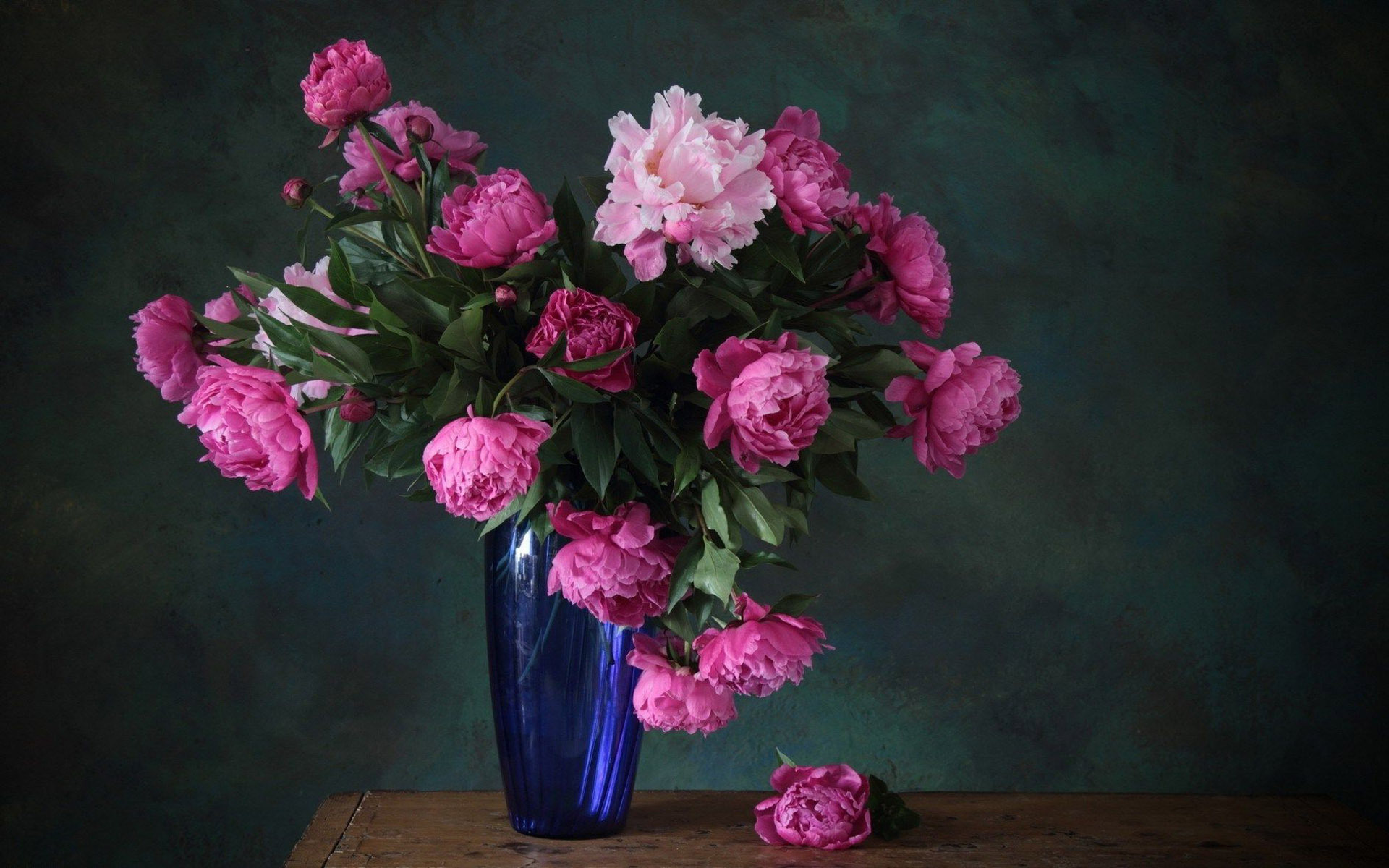 Photo: High Resolution Peony Photos, by Zoe Primo