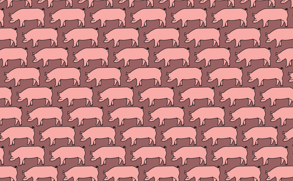 Pig, HQ Definition Backgrounds, Gus Bushee