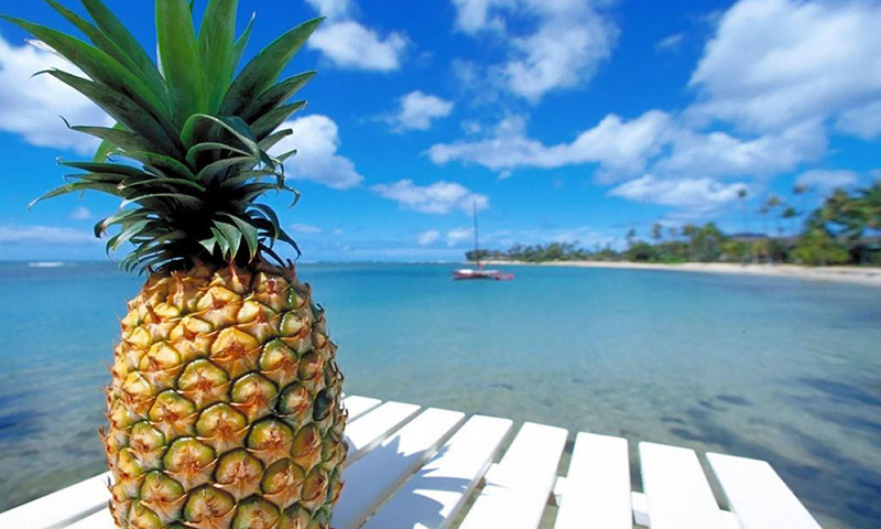 Pineapple Wallpapers 800x480 | B.SCB Wallpapers
