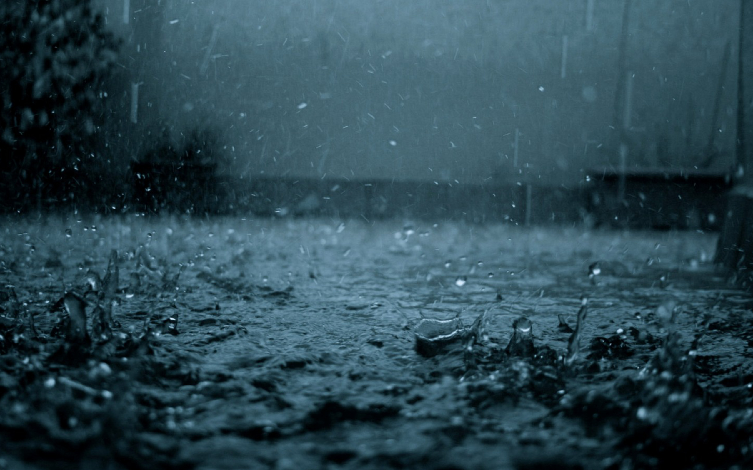 Widescreen Wallpapers: Raindrops, (2560x1600 px, V.31)
