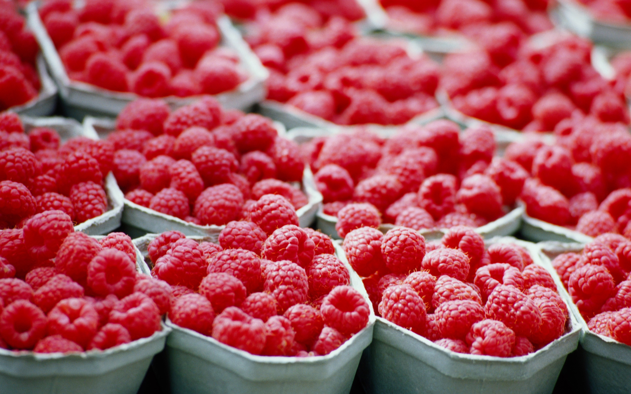 PC 2560x1600 px Raspberries Wallpaper, BsnSCB Gallery