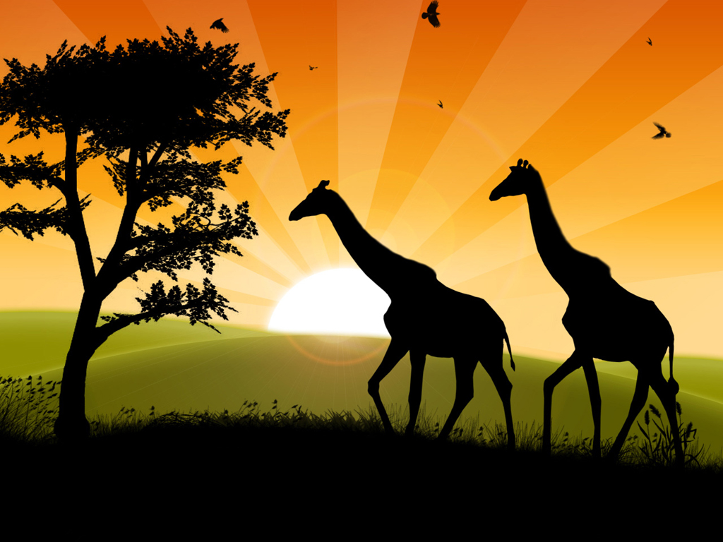 Safari Wallpaper for PC | Full HD Pictures