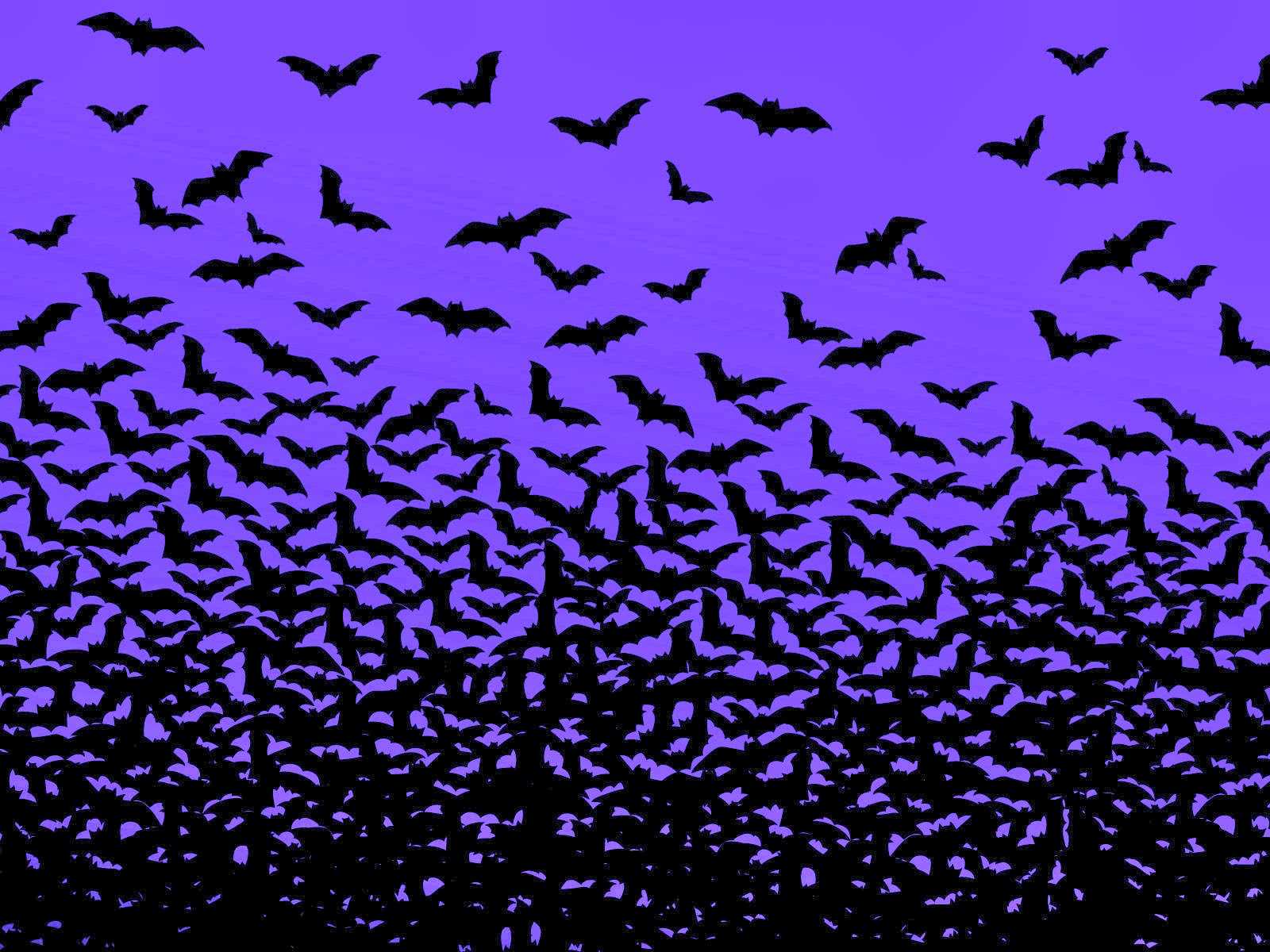 By Josephina Winsett PC.53: Bats Images&Images