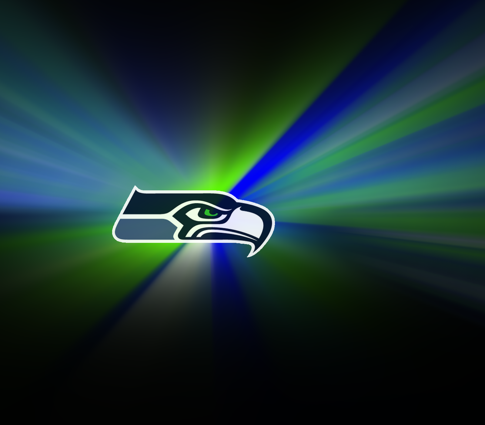 Beautiful Seahawks Images in Full HD
