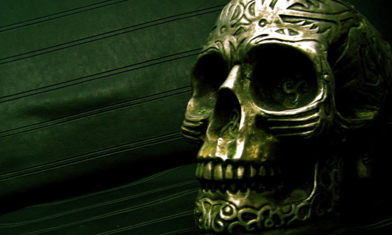 Skulls Backgrounds 100% Quality HD 800x480 px