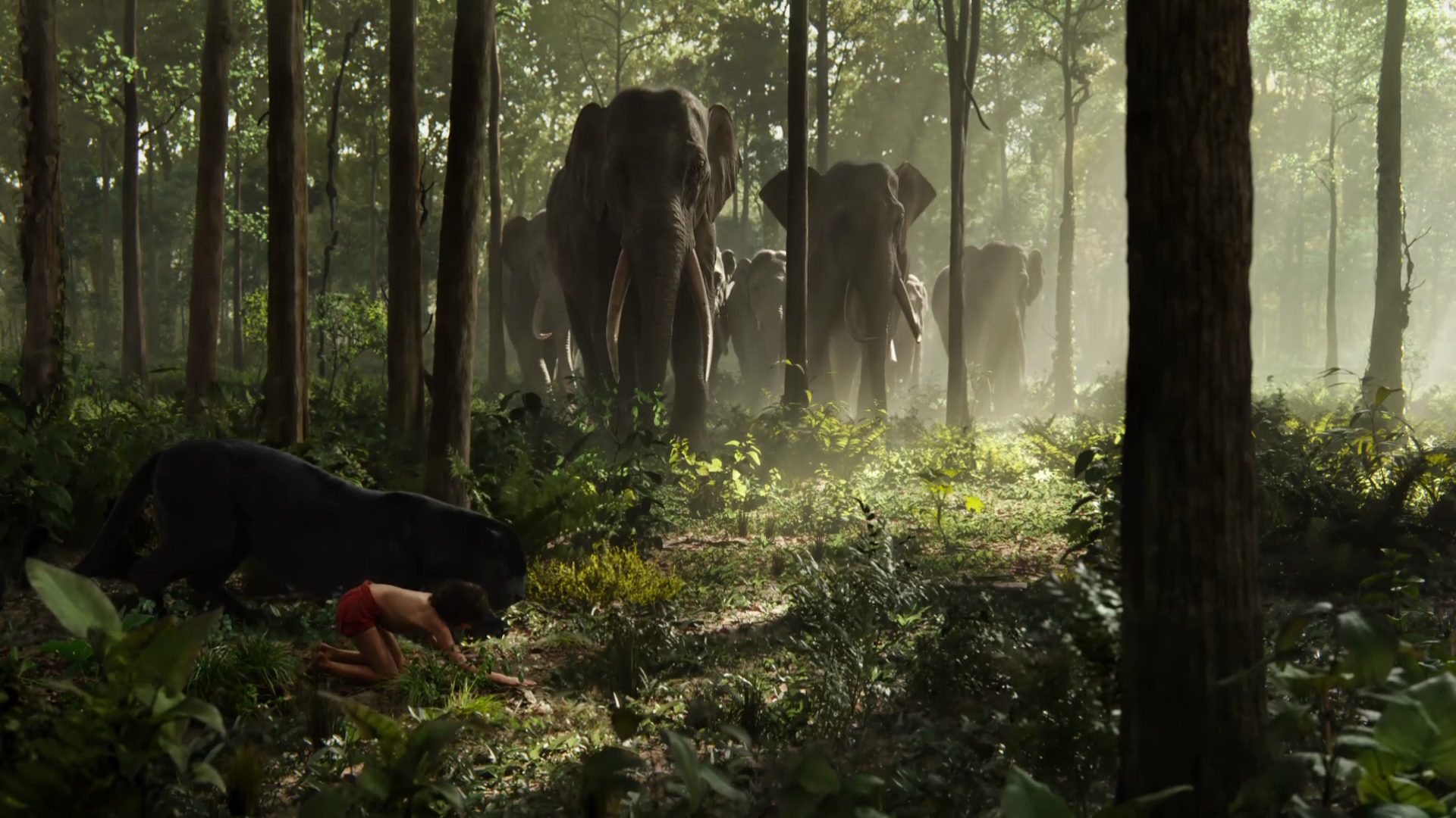 The Jungle Book Wallpapers 1920x1080 px | B.SCB WP&BG Collection