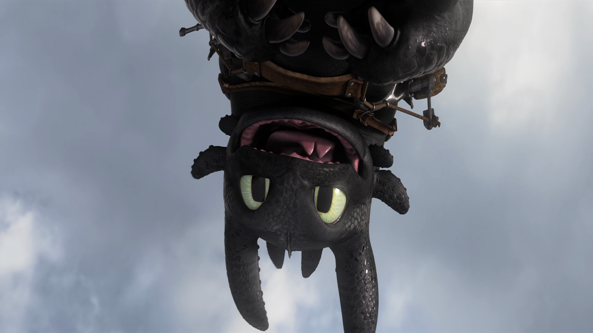 Toothless, GWN.48