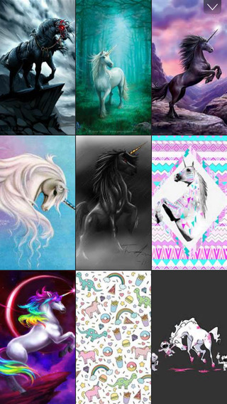 Unicorns » Live HD Unicorns Wallpapers, Photos