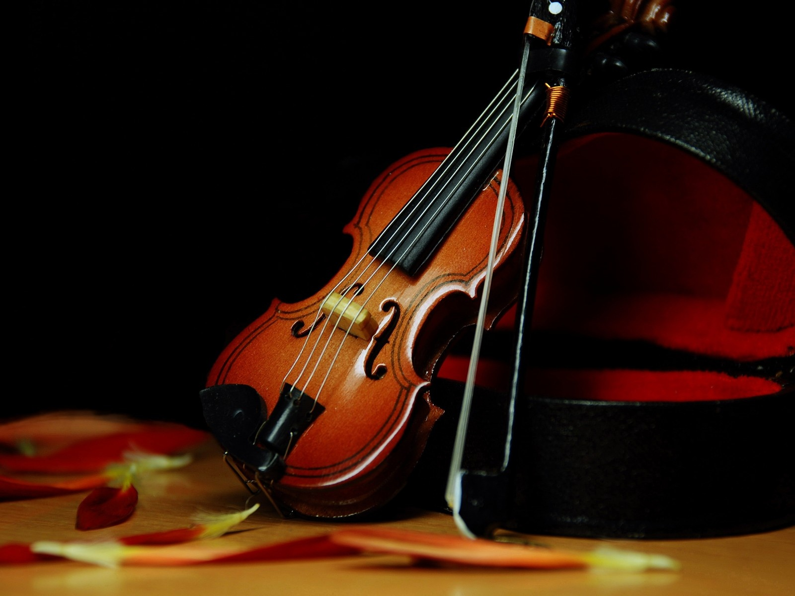 Violin HDQ Images