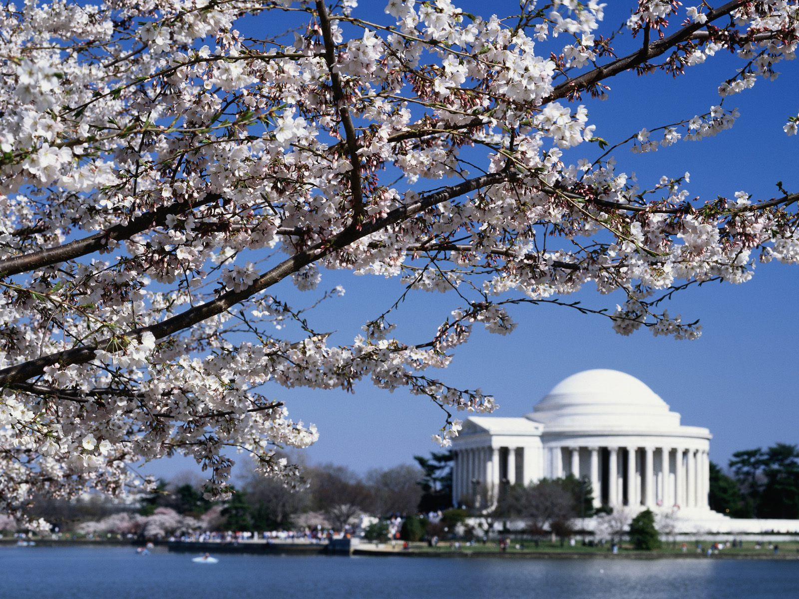 Laila Brownlee: Top HD Washington Wallpapers, HDQ