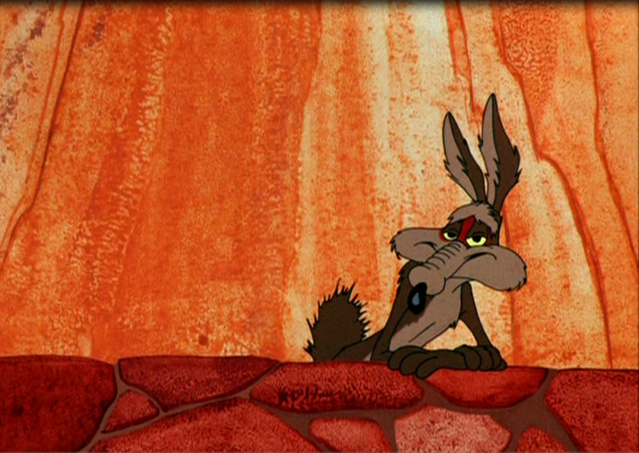 RMD:41 HD Wile E Coyote Wallpapers