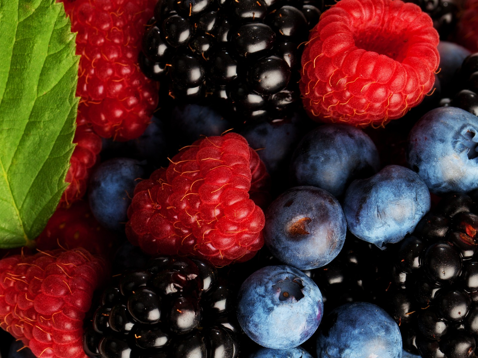 38905254, Wonderful Berries Backgrounds, Sade Newhall