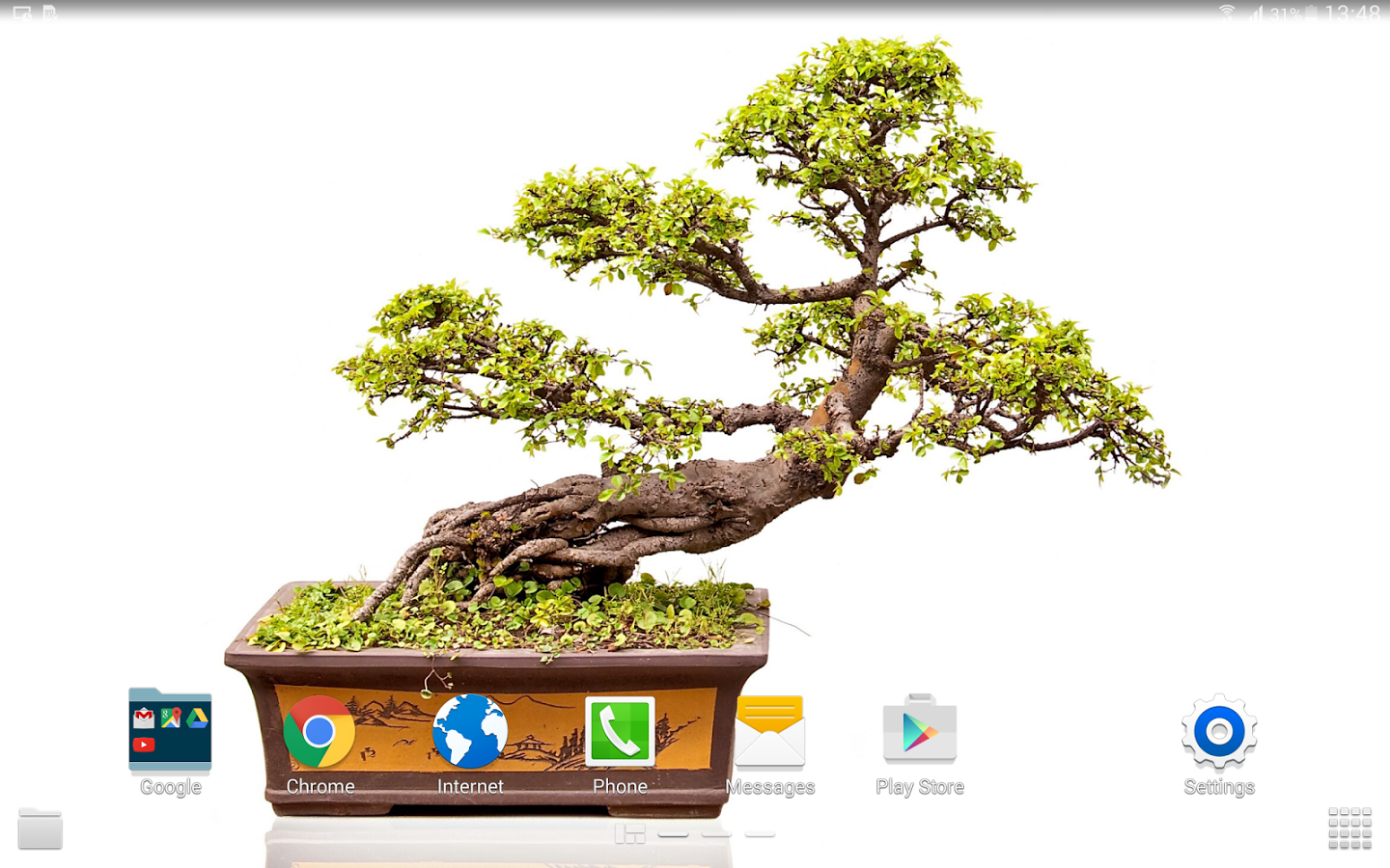 Photo Collection: UAX.43 Bonsai, 26/01/2014