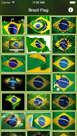 Brazil Flag (p.75-NZK) - BsnSCB Graphics