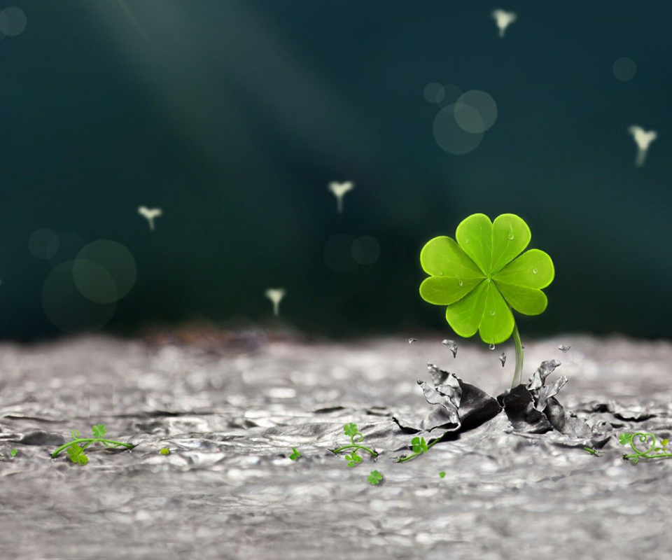 39027876 Clover Full HD Quality Wallpapers - 960x800
