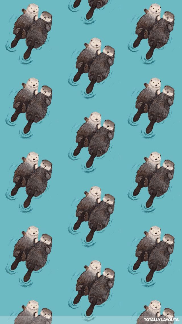 4:3 LMA.3636 Cute Otter Images