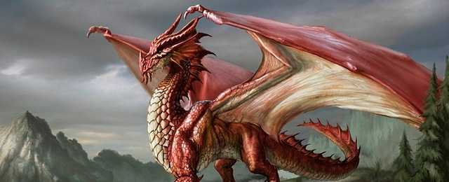 Dragons Wallpaper 640x260 px