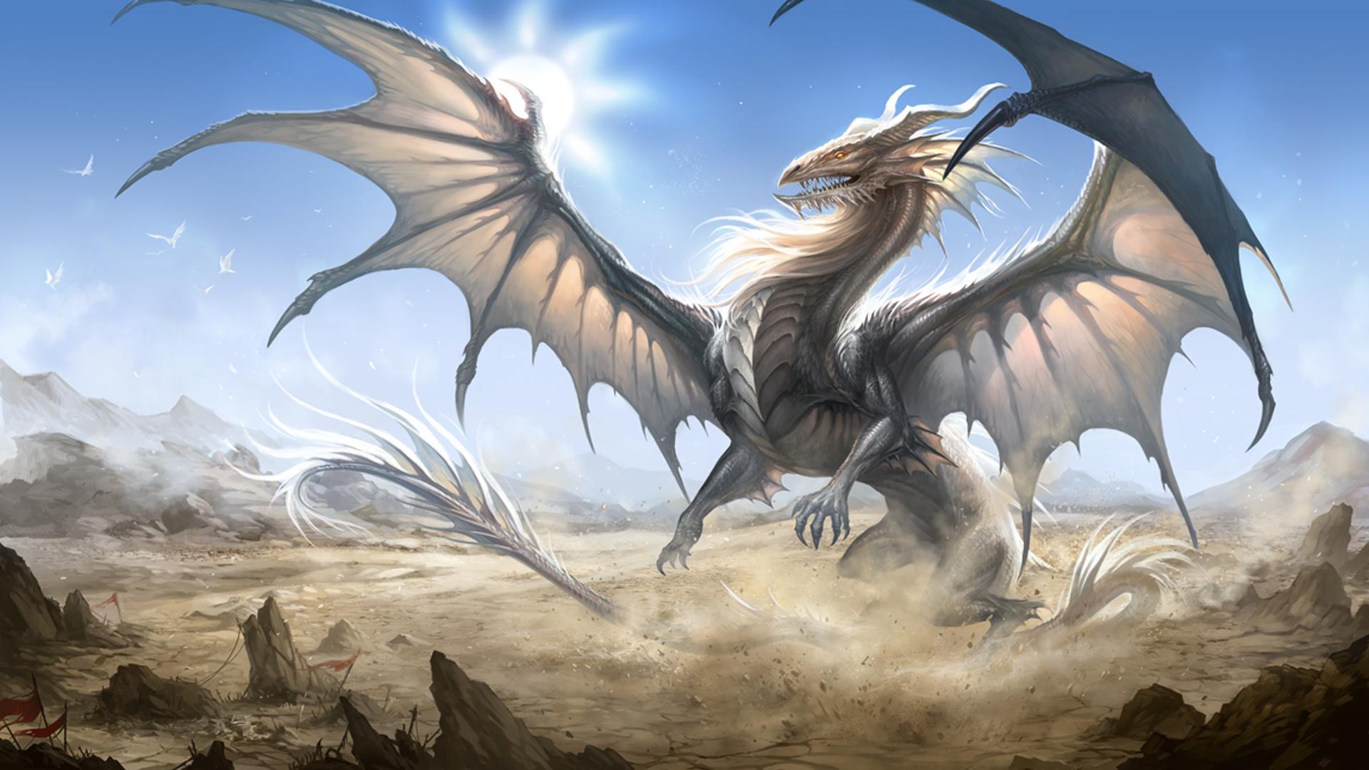 Dragon, HQ Definition Backgrounds, Neida Mahurin