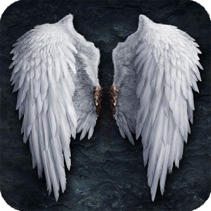 HDQ Beautiful Angel Wings Images & Wallpapers (Danyelle Tosi, October 18, 2015)