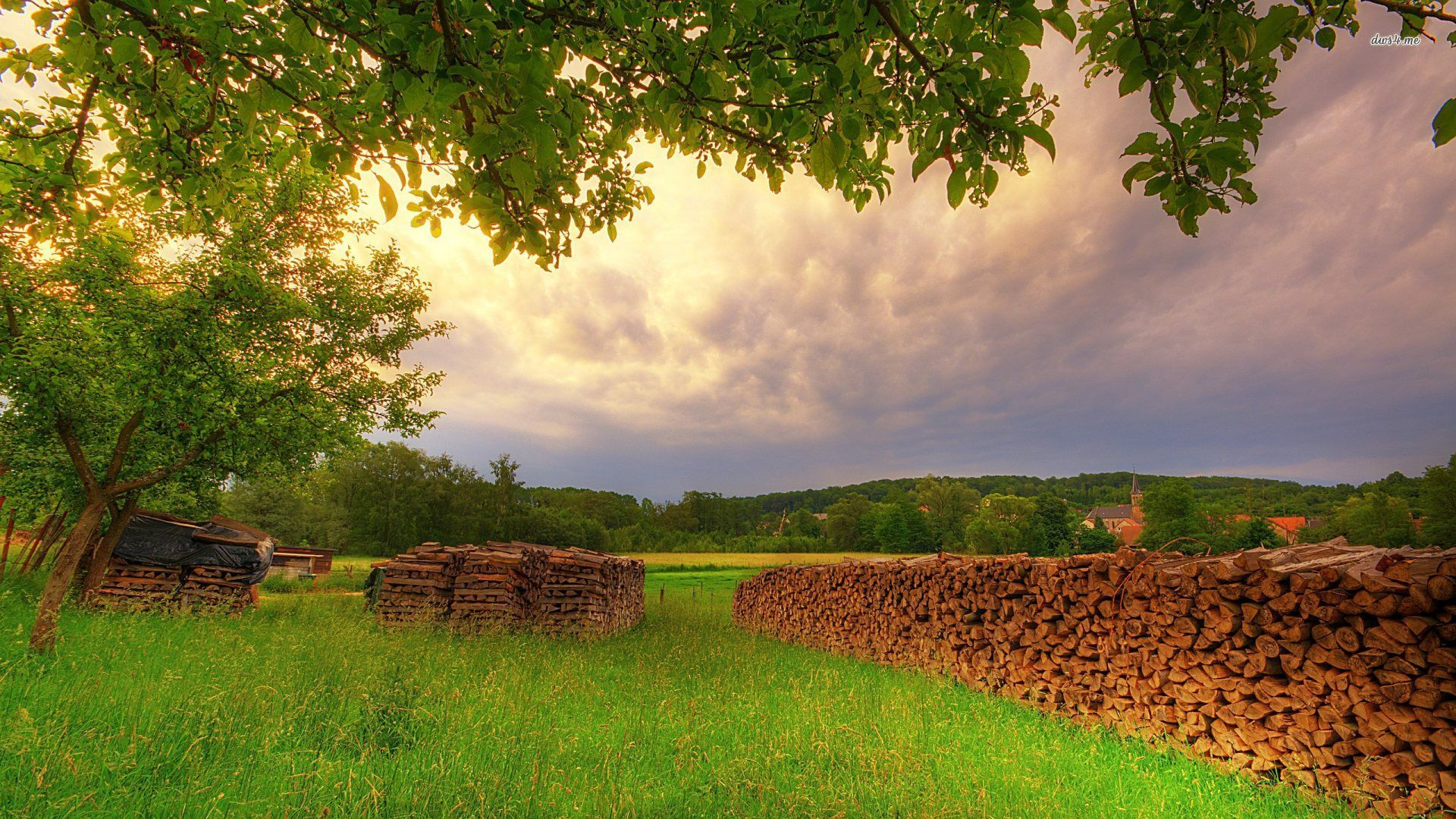 KMSKMS Firewood Backgrounds, B.SCB