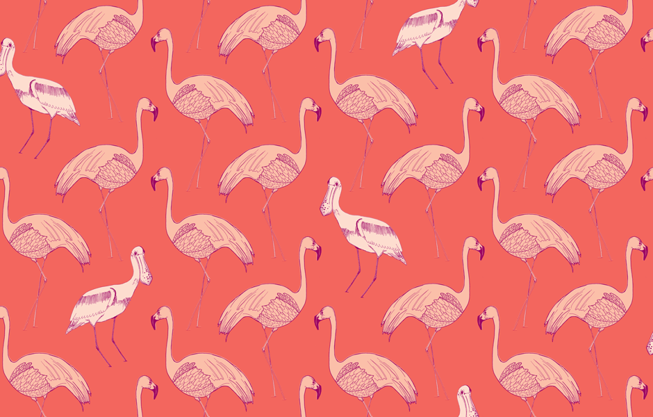 Flamingo 39358518 Wallpaper for Free | Cool FHDQ Images