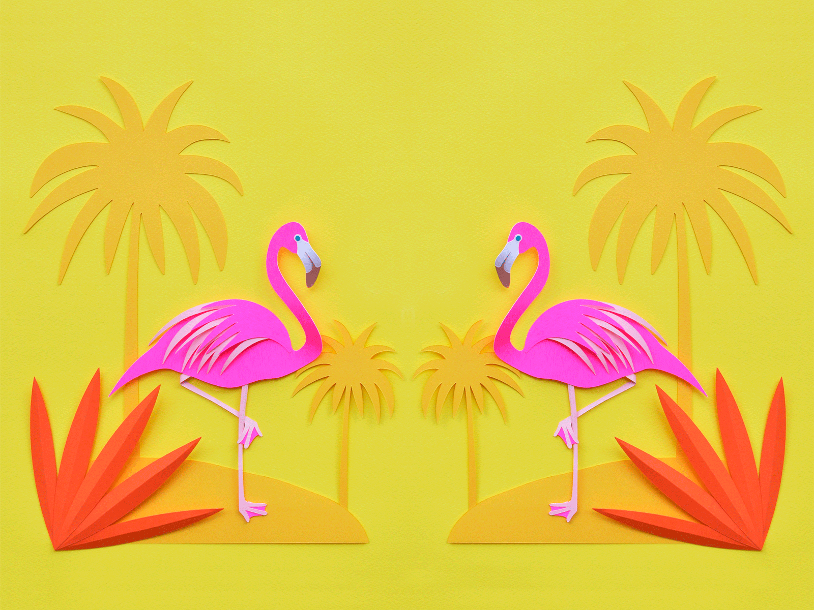 Full HD Flamingo Wallpapers, High Quality, BsnSCB Gallery