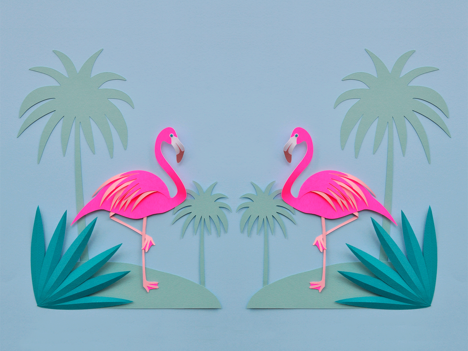 PC.3232, Flamingo HD Photo
