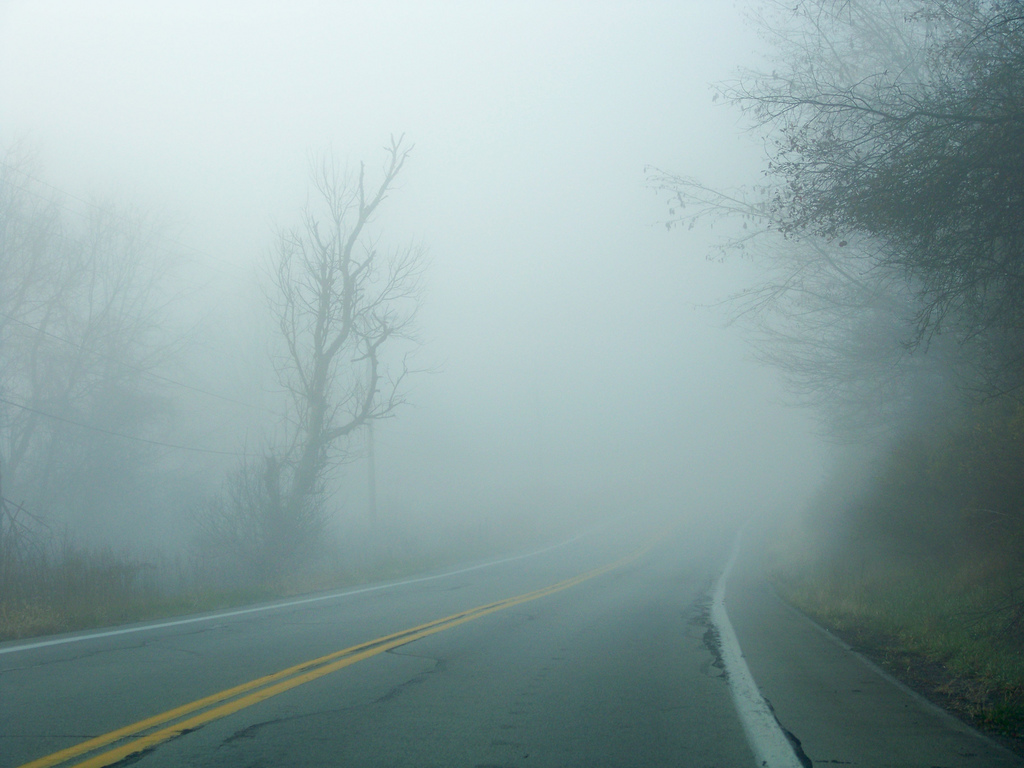 Widescreen Wallpapers: Foggy Road, (1024x768, V.46)