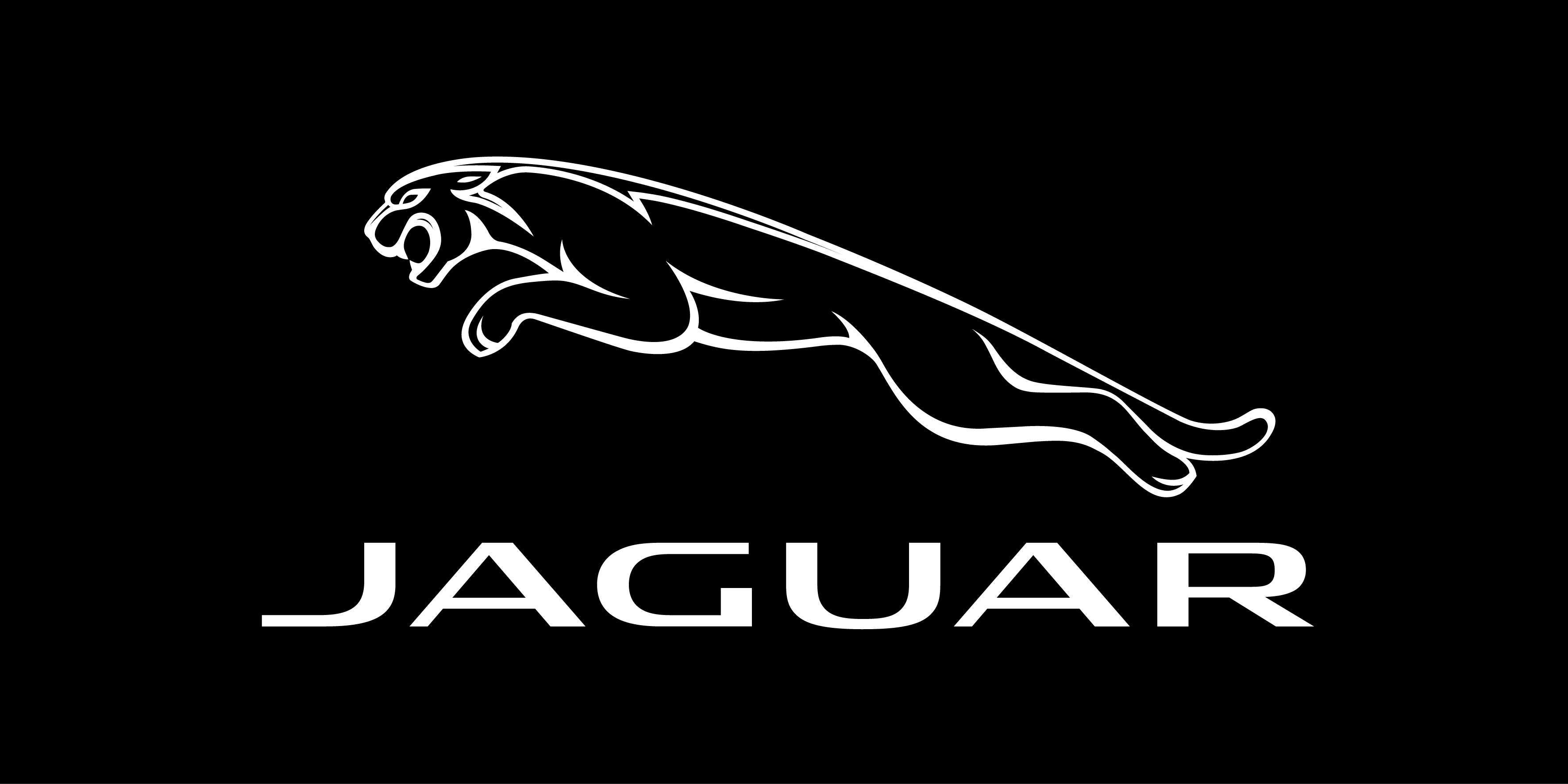 Free Jaguar 3543x1772 px- HDQ Wallpapers