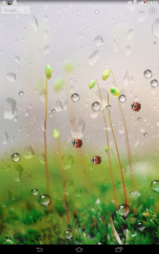 26/08/2015 - Free Raindrops (Pictures), 320x512