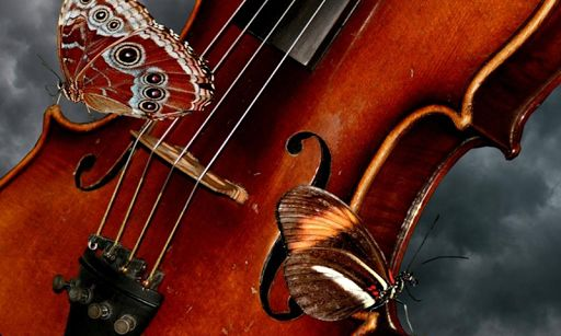 Best Free Violin Wallpapers in High Quality, Lavonne Stobaugh, 0.03 Mb